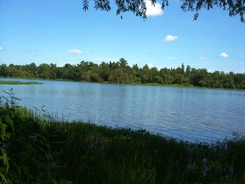 Rivert Front Lot In Gated Community : Sawyerville : Hale County : Alabama