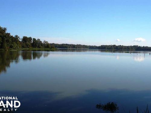 Black Warrior Bay Waterfront Lot : Sawyerville : Hale County : Alabama