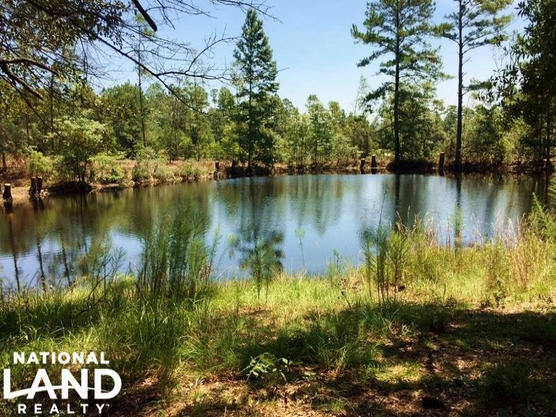 Mobile Residential Land With Pond : Mobile : Mobile County : Alabama