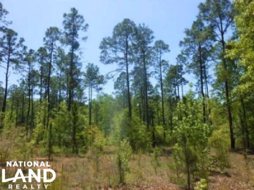 Timber Investment & Recreational Tr : Deatsville : Autauga County : Alabama