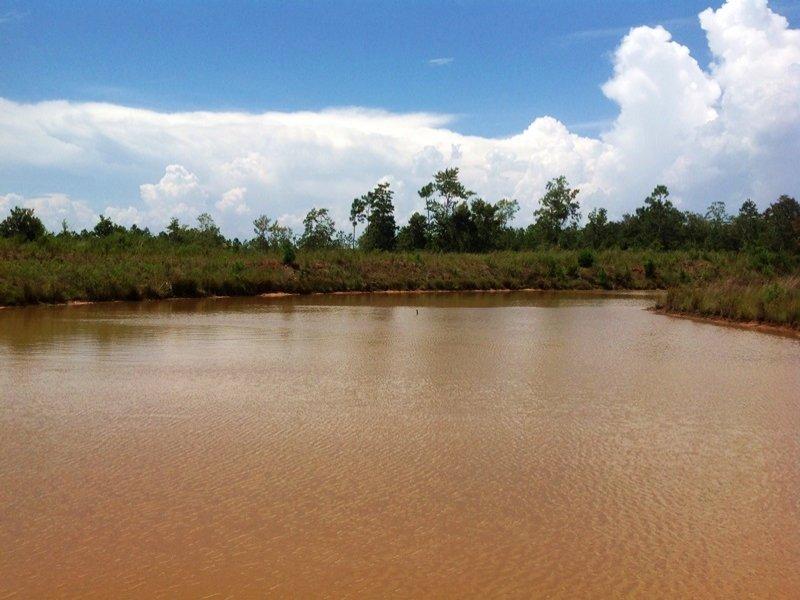 Mobile Bay Recreational Land : Fairhope : Baldwin County : Alabama