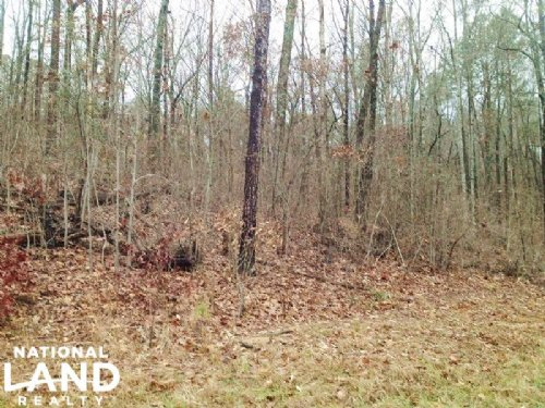 Wooded Home or Commercial Site : Woodstock : Bibb County : Alabama