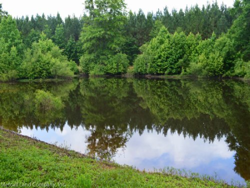 Reduced 8 Acres With A Pond : Gaffney : Cherokee County : South Carolina