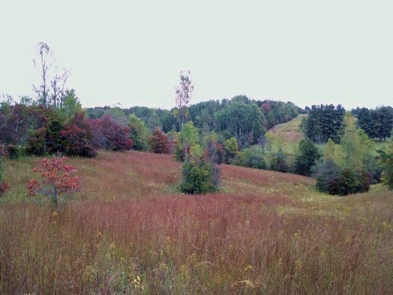Stout Rd - 46 Acres : Logan : Hocking County : Ohio