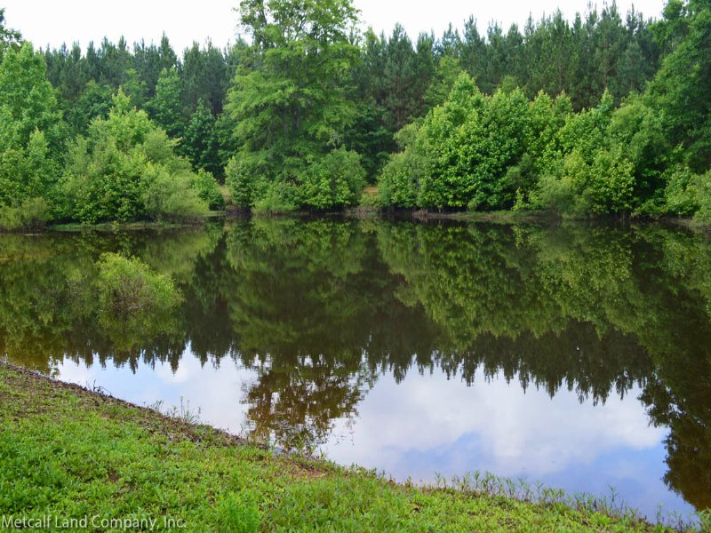 Reduced2.5 Acre Homesite With Pond : Gaffney : Cherokee County : South Carolina