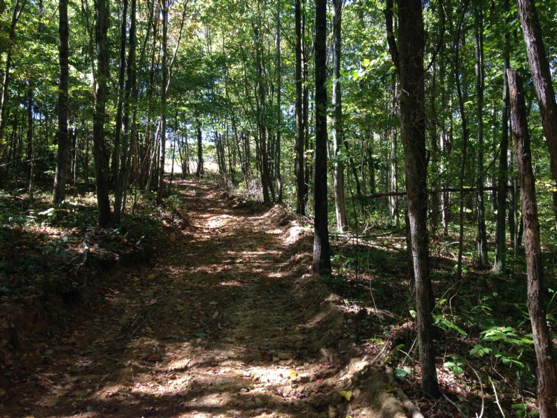 46 Acres Of Rolling Hills : McDermott : Scioto County : Ohio
