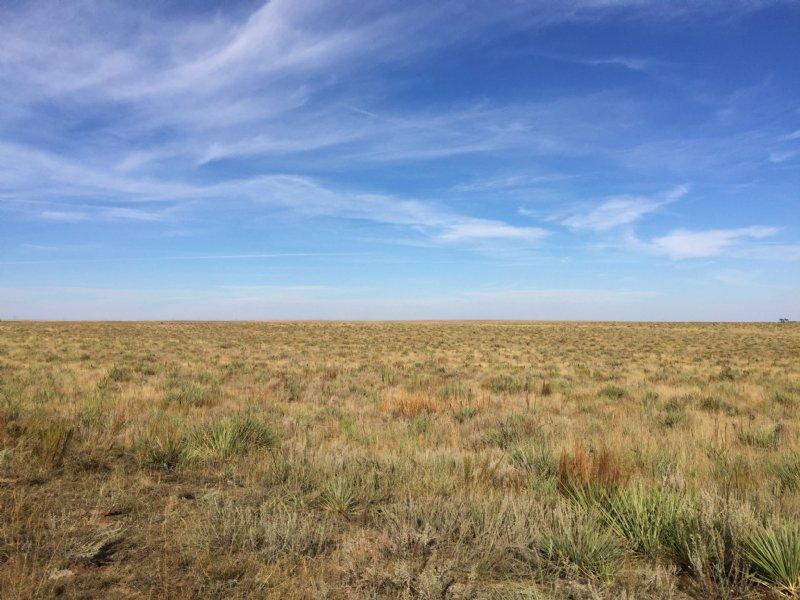 Adobe Creek Ranch : Matheson : Elbert County : Colorado