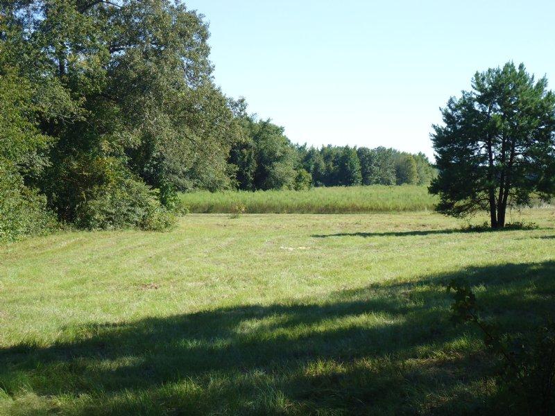 34 Acres Bargain Priced : Oconee : Washington County : Georgia
