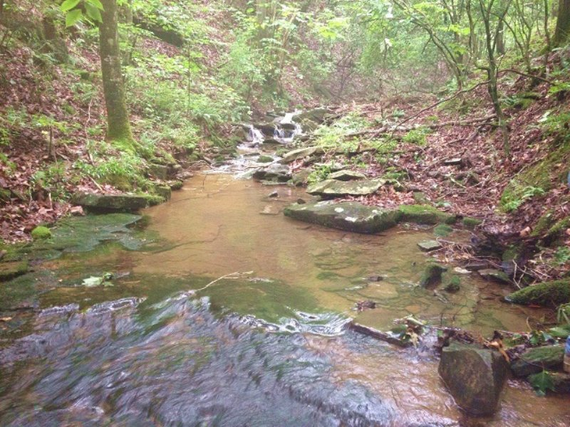 17+/- Acres With Creek : South Pittsburg : Marion County : Tennessee