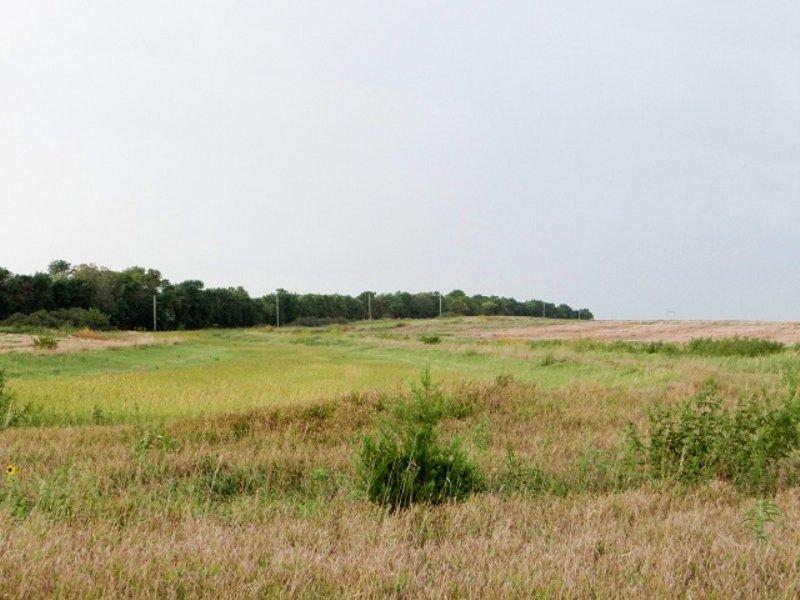 Auction-866 Farmland Acres/6 Tracts : Hope : Dickinson County : Kansas
