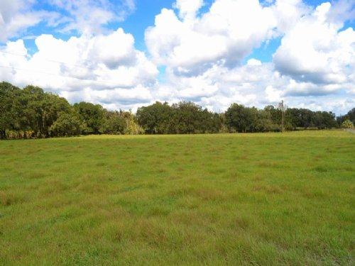 Sunshine Ranchettes : Arcadia : DeSoto County : Florida