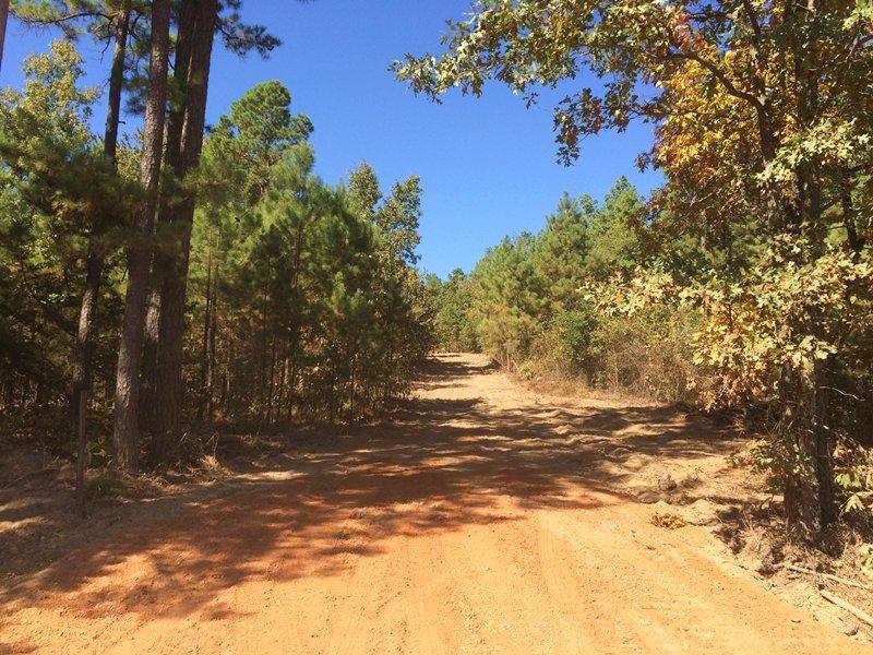 Turkey Springs North : Sobol : Pushmataha County : Oklahoma