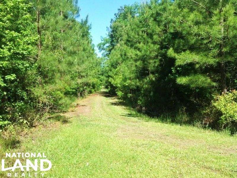 National Forest Recreational Homesi : Bonneau : Berkeley County : South Carolina