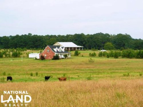 Horse Ranch & Hunting Land : Quitman : Clarke County : Mississippi