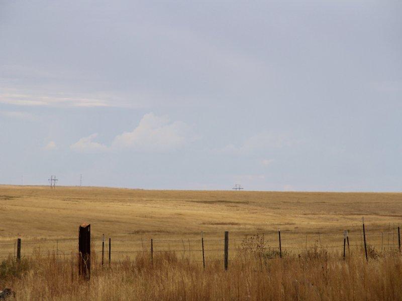 Agate Grass : Agate : Elbert County : Colorado