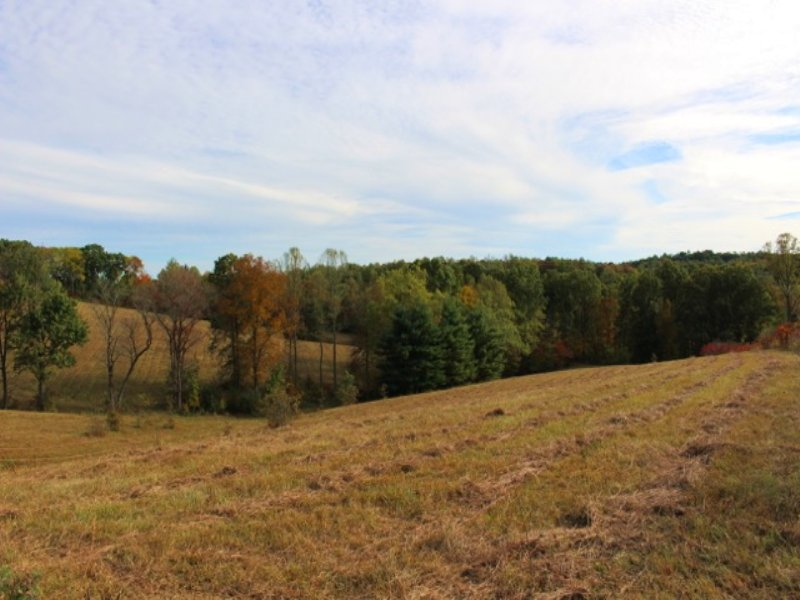 Potter Ridge - 31 Acres : Creola : Hocking County : Ohio