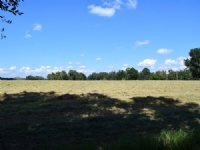 Beautiful 254 Acre Ranch : Brooksville : Hernando County : Florida
