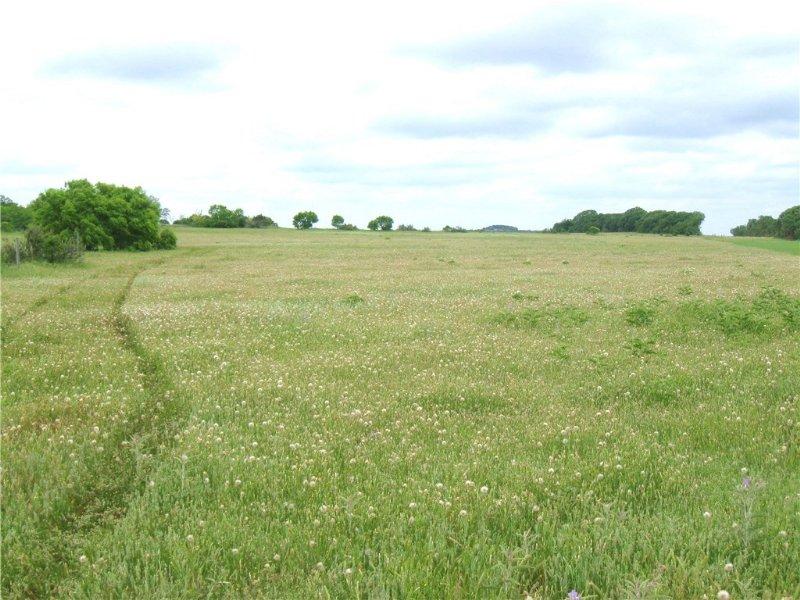 67.1 Scenic Acres : Stephenville : Erath County : Texas