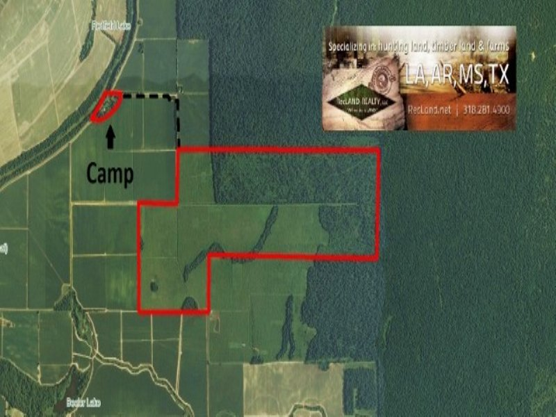 622.00 Acres Hunting Land, CRP : Winnsboro : Franklin Parish : Louisiana
