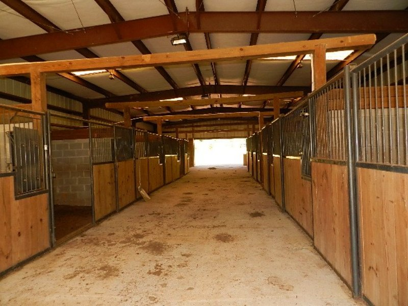 Equestrian Property - Reduced! : Milledgeville : Baldwin County : Georgia