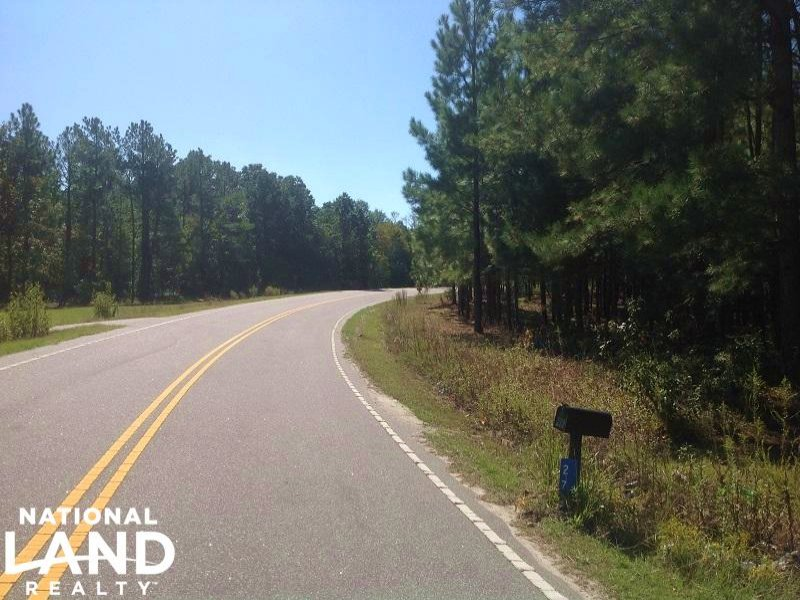 Lee County Recreational Property : Bishopville : Lee County : South Carolina