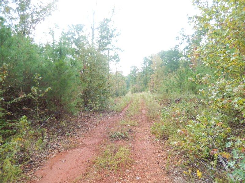 Recreational Tract-good Lake Site : Jackson : Butts County : Georgia
