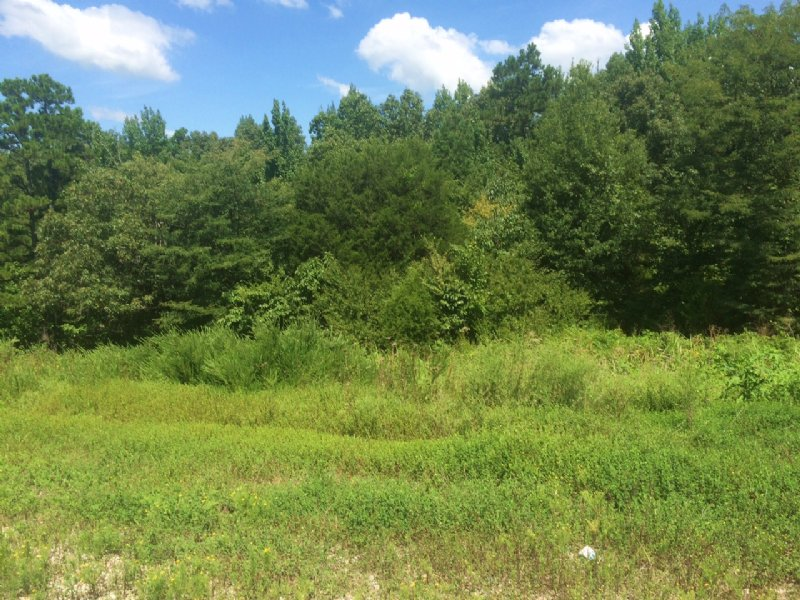 11.65 Ac +/- Just Outside Of City : Paragould : Greene County : Arkansas