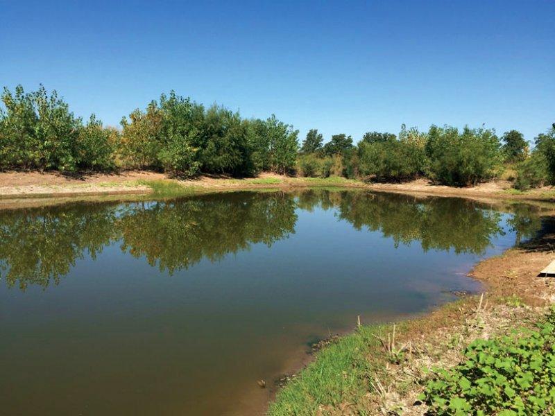 Quiet Country Living : Calumet : Canadian County : Oklahoma