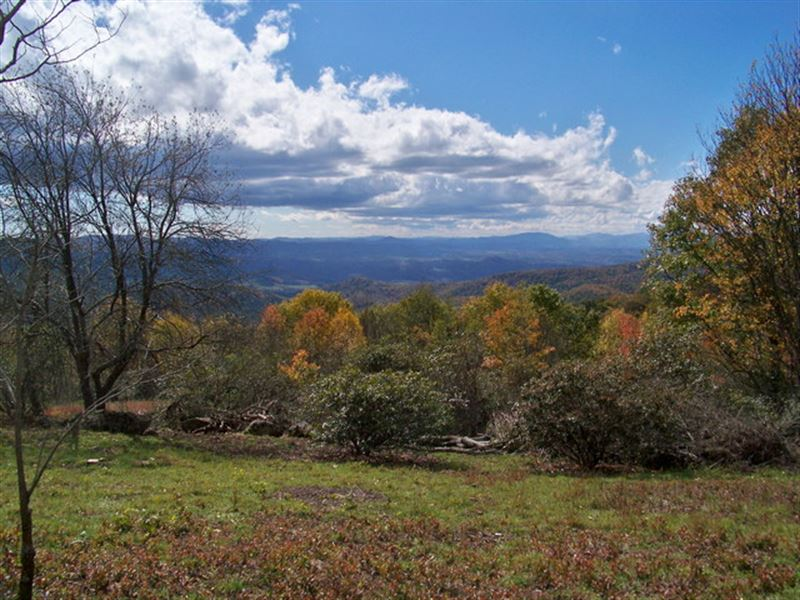 Lot T-12 Views In Blue Ridge Mtns : Independence : Grayson County : Virginia