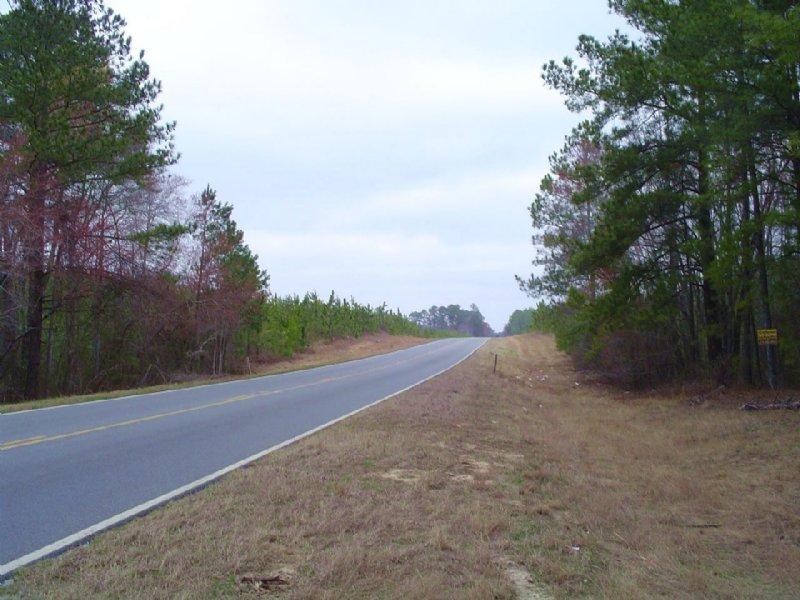 Hambrick Parcel 6 : Eastman : Dodge County : Georgia