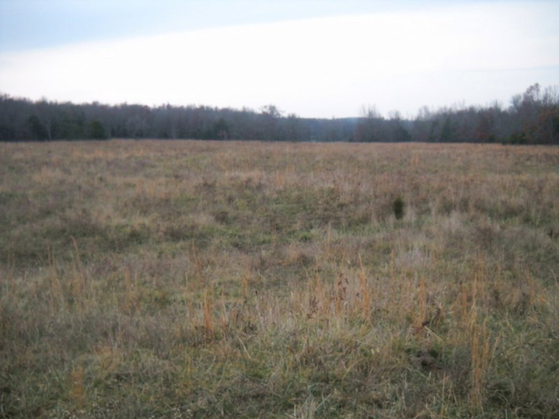 200 Ac +/- Ravenden : Ravenden : Lawrence County : Arkansas