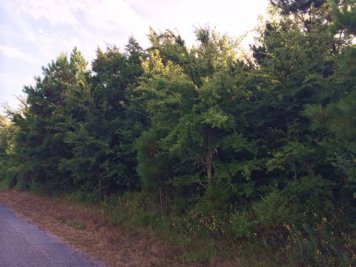 4 Ac +/- Residential Lot : Oak Grove : Greene County : Arkansas