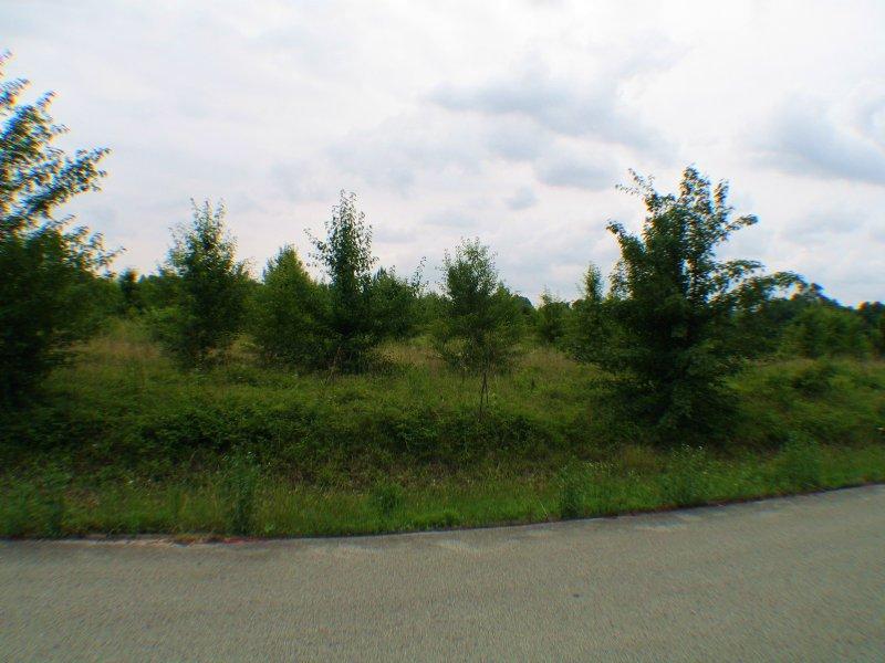 39 Ac +/- Residential Development : Jonesboro : Craighead County : Arkansas