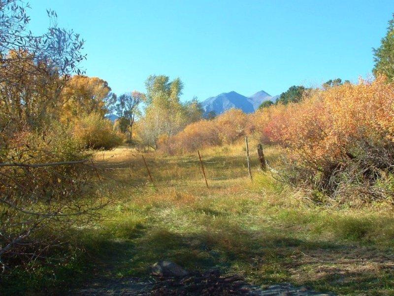 9.66 Acres Horse Farm Land : Salida : Chaffee County : Colorado