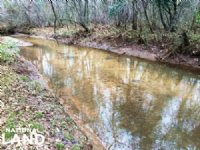 The Persimmon Creek Tract : Greenville : Butler County : Alabama
