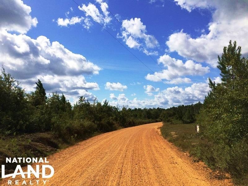 The Hawthorne Tract : Wagarville : Washington County : Alabama