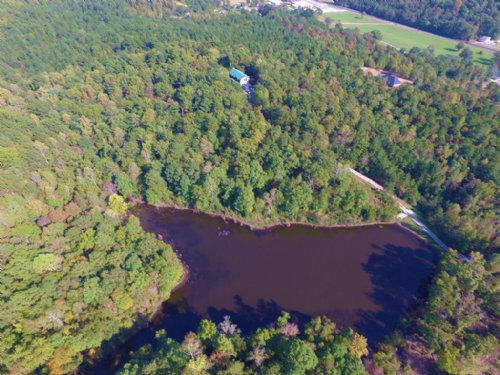 40 Acres, Lake & 6 Br Cabin : Ragland : Saint Clair County : Alabama