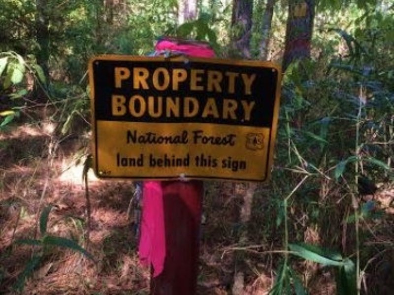 30.00 Acres Hunting Land : Gloster : Amite County : Mississippi