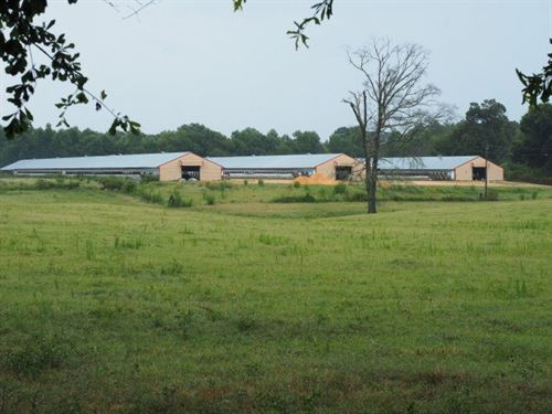 Poultry Farm With 60 Acres, Mt, Oli : Mount Olive : Covington County : Mississippi