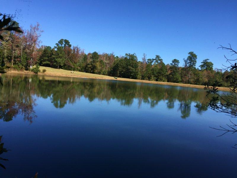 The Pond At Soap Creek : Lincolnton : Lincoln County : Georgia