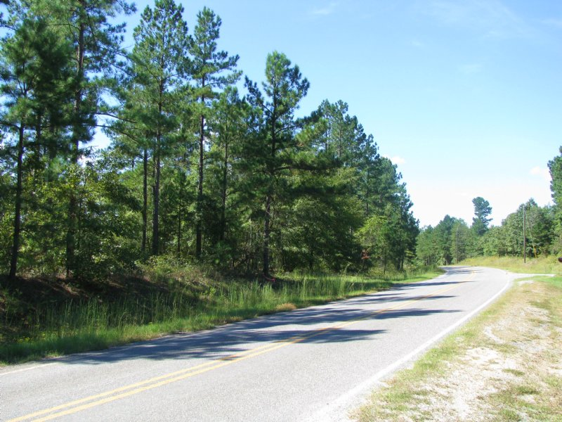 ±116 Acre Timber Tract For Sale : Gray : Jones County : Georgia