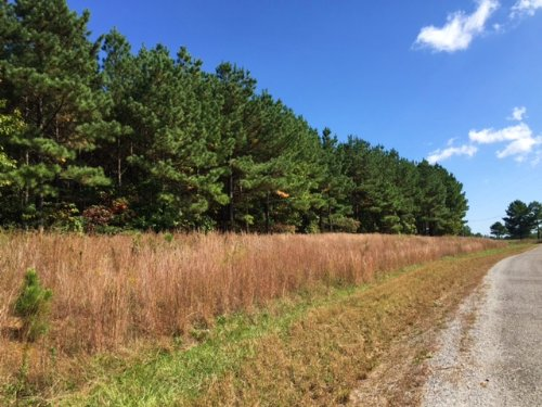 7.16+/- Acres W/electric $20,000 : South Pittsburg : Marion County : Tennessee