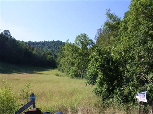 76.60 Acres Of Fields And Woodlands : Big Otter : Clay County : West Virginia