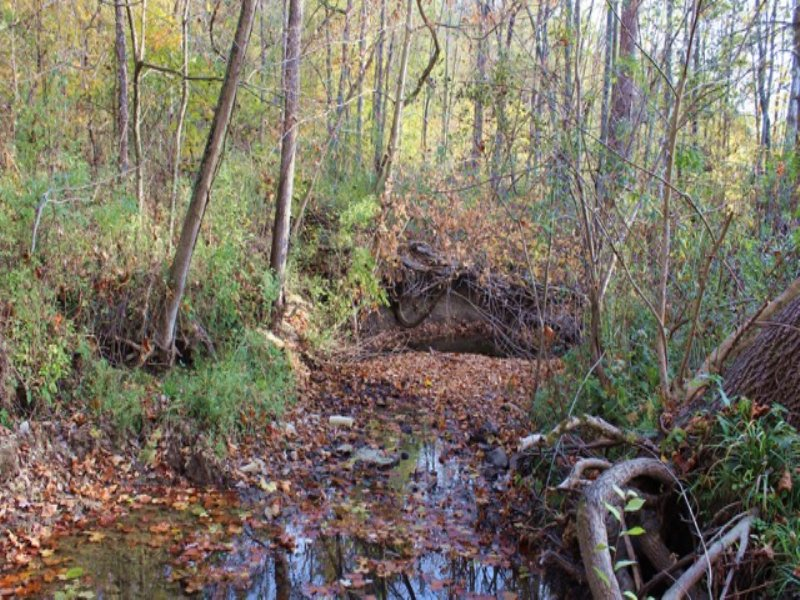 Baker Rd - 99 Acres - : Gambier : Knox County : Ohio