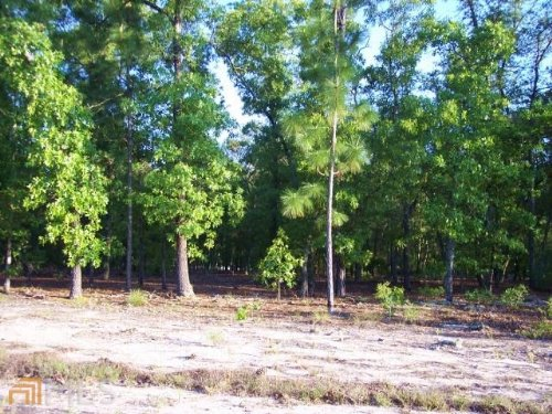 Beautiful Residential Lot : Blackshear : Pierce County : Georgia