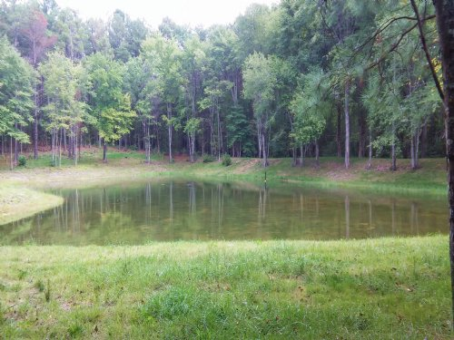 3 Acres Pond Access : Spotsylvania County : Virginia