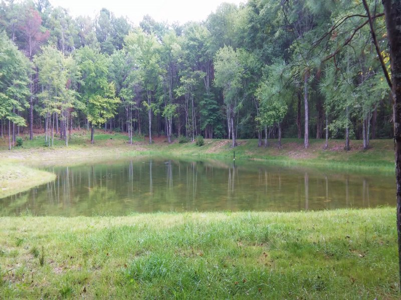 3 Acres Pond Access : Spotsylvania : Spotsylvania County : Virginia