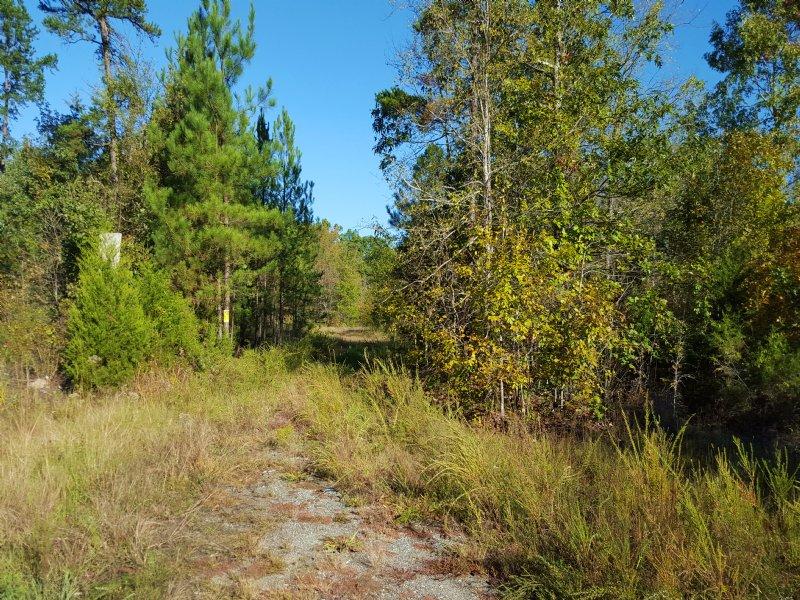 288.67 Acres : Gaffney : Cherokee County : South Carolina
