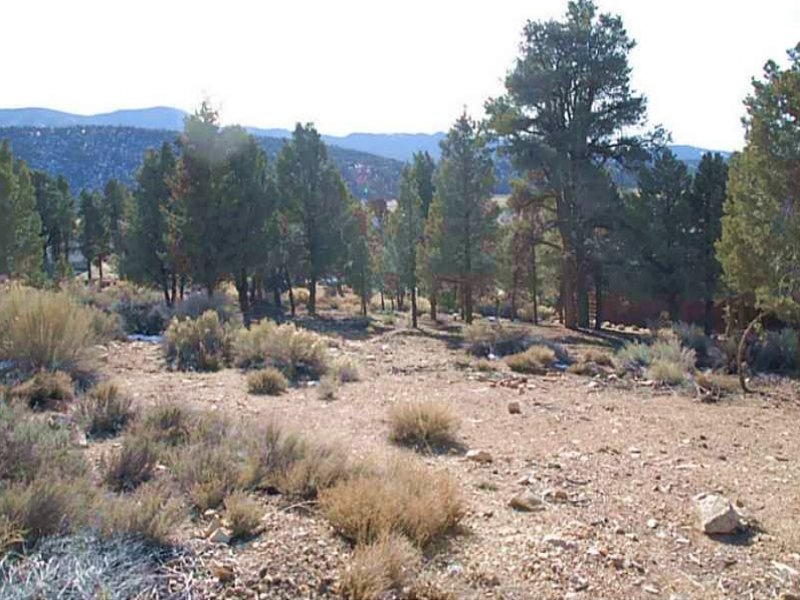 Vacant Residential Lot For Sale : Big Bear City : San Bernardino County : California