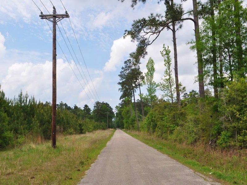 50 Acres Burrell Road W : Buna : Jasper County : Texas